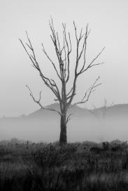 Hills of Chesney Vale