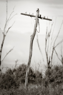 Old Power Pole at Winton North