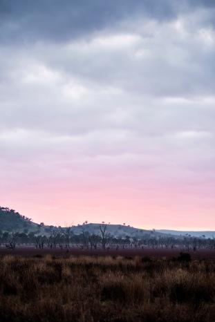 Pink sunrise over Mokoan