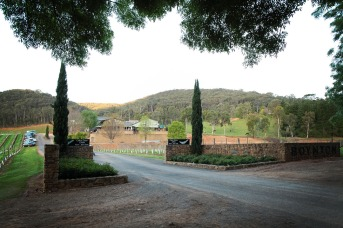Boyntons Winery