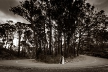 Mount Buffalo Wedding Photos