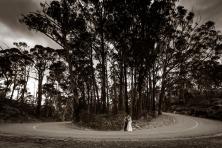 Mount Buffalo Wedding Photos