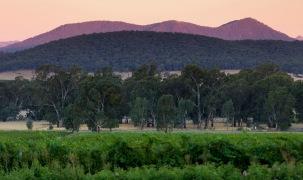 King Valley Sunset