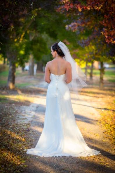 Wedding photos at Boyntons