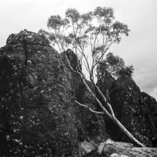 Mamiya C220, Hanging Rock.