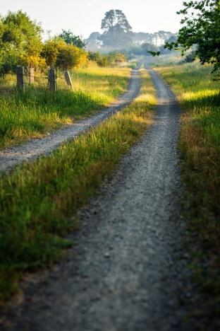 Smeaton Track
