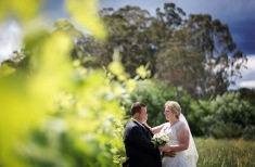 photos wedding pizzini winery