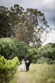 wedding photos pizzini winery
