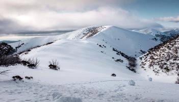 The Razorback ridge