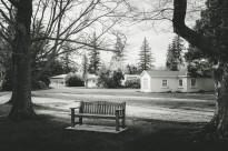 A park bench in Hanmer Springs