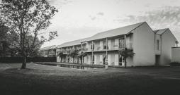 Lindenwarrah