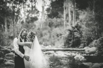 Mansfield Weddings 4