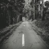Alton Road 3