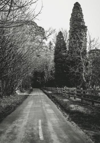 Alton Road