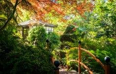 Forest Glade Gardens Mount Macedon 2