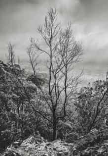 Macedon Ranges Storm