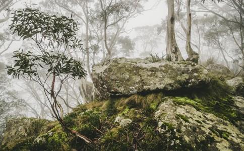 Mount Macedon-9