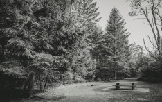 Sanatorium Lake Picnic Area
