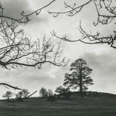 Photography-Workshop-in-Malmsbury
