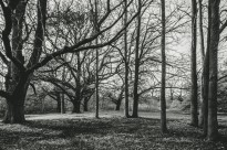 Gisborne-Victoria
