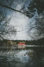 Lake Daylesford Photo