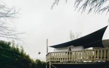 renne-and-kookaburra