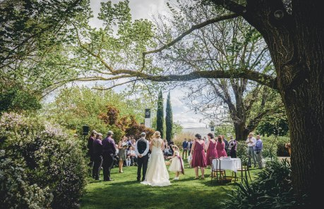22-brown-brothers-winery-wedding