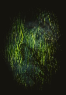 Bendigo-Photography-Workshop